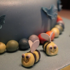 Butterflies and bees cake