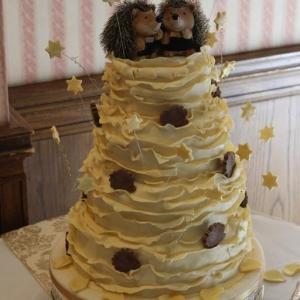 Chocolate hedgehog