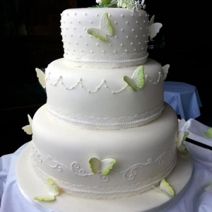 Lime rose and butterflies