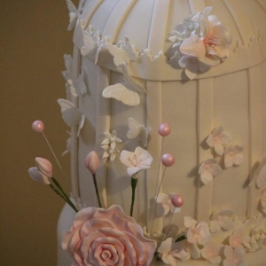 Pink and white birdcage